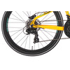 "Serious Rockaway 24"" Disc Yellow-Black"
